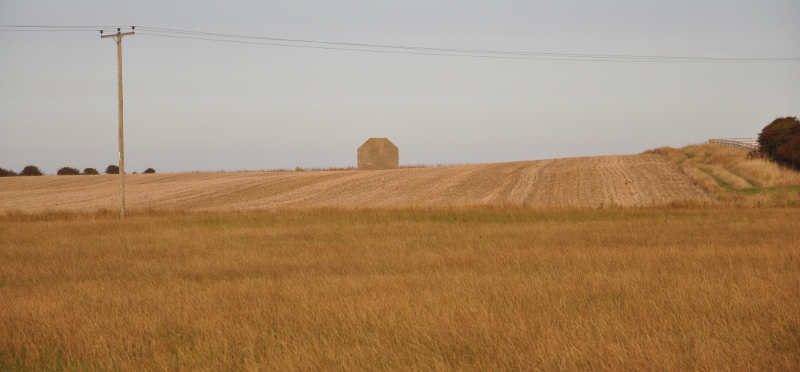 Photo of the Kilnsea acoustic mirror amidst fields