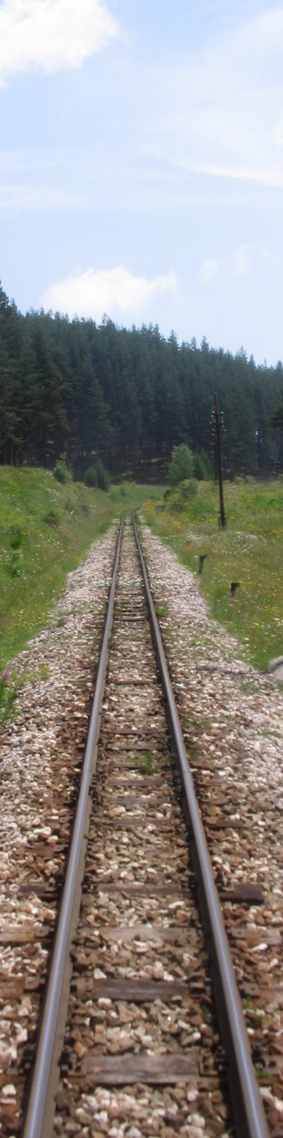 Railways Had Come Late To Bulgaria And The Initial 39 Km Of The Narrow Gauge Line From Septemvri As Far As Velingrad Has Just Completed Its 80th Year